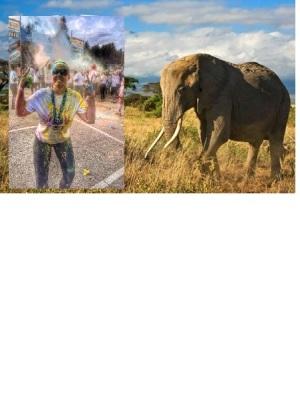 Blondi safarilla. Uskokaa tai älkää oon muokannut noi kuvat. En oikeesti oo vielä ollu safarilla.